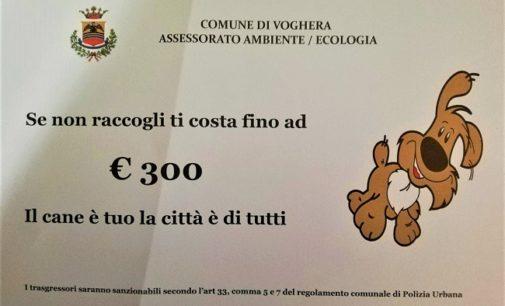 """VOGHERA 30/09/2019: """"Se non raccogli ti costa fino a 300 euro"""". Parte la campagna di sensibilizzazione del Comune rivolta a chi ha un cane"""