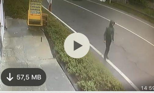 VOGHERA 06/11/2019: Minorenne pluri denunciato per furti e rapina batte a tappeto la città. Il giovane lunedì sarebbe entrato anche in un asilo. Oramai è allarme sociale