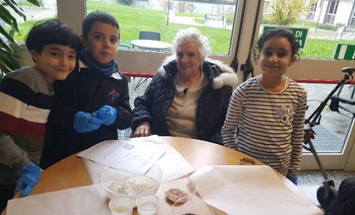 VOGHERA 15/11/2019: Scuola. Alunni della De Amicis pasticceri per un giorno fra i nonni della Pezzani