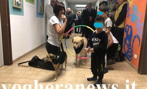 """VOGHERA 12/11/2019: Pet Therapy in Ospedale. La donazione del """"Lions Club Stradella Broni Montalino"""" ai bambini della Pediatria"""
