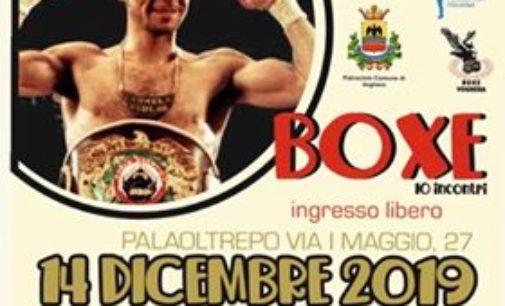 VOGHERA 05/12/2019: Boxe. Al PalaOltrepo il Memorial Parisi