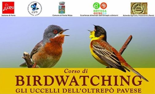 """OLTREPO 21/02/2020: """"Birdwatching"""". Da Marzo a Giugno un corso in Oltrepò e Valle Staffora"""