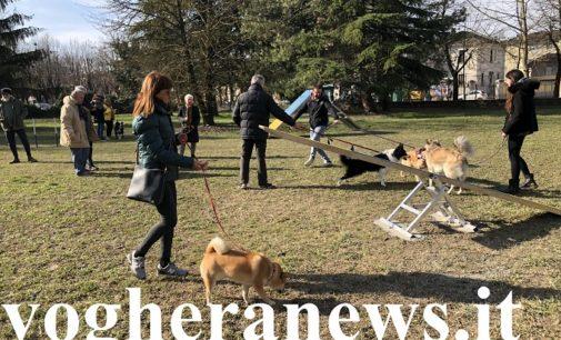 VOGHERA 21/02/2020: Inaugurato il nuovo parco in viale Repubblica dedicato ai cani