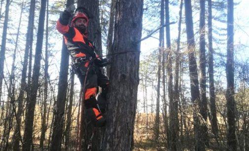 VARZI 21/02/2020: Al via il corso per Operatore forestale. Aperte le iscrizioni