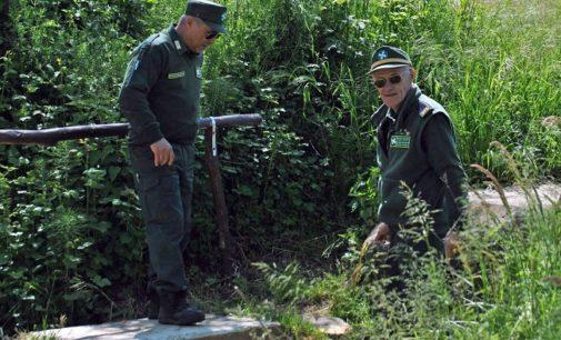 PAVESE OLTREPO LOMELLINA 30/06/2020: Tutela dell'ambiente e della biodiversità. Parte il corso web per diventare Guardia Ecologica Volontaria (GEV). Tutte le info