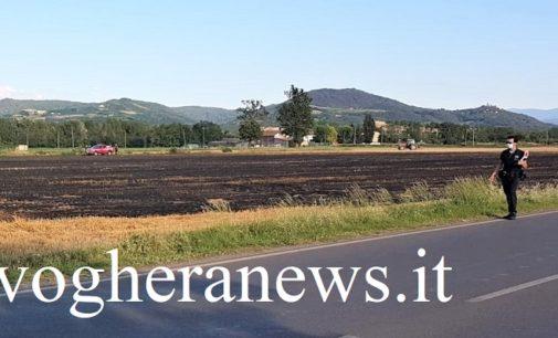 VOGHERA 25/06/2020: Fiamme mandano in fumo campo lungo la Sp del Penice. Pompieri al lavoro