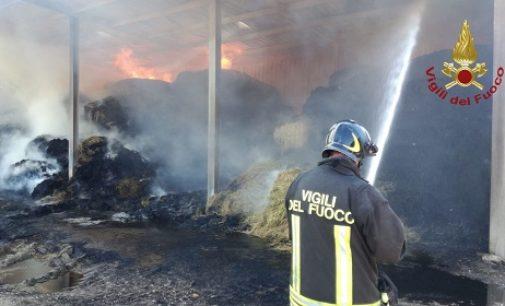 MEDE 23/06/2020: Incendio di rotoballe in via dei Frati. Molte squadre dei Vvf al lavoro