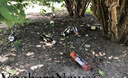 VOGHERA 07/07/2020: Giardini della stazione. Nell'erba e sotto gli alberi i segni del 'passaggio' dei maleducati: bottiglie scarpe cicche e… mutandine FOTO VIDEO
