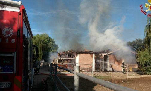 """SANT""""ALESSIO 26/07/2020: Incendio al maneggio. 11 cavalli morti a causa del rogo"""