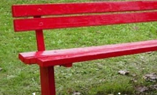 "PANCARANA 13/07/2020: Il Comune inaugura la ""panchina rossa"""