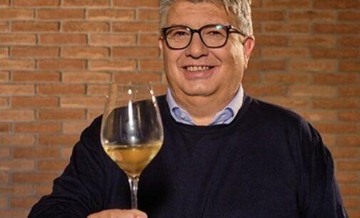 """OLTREPO PAVESE 29/10/2020: I viticoltori di Torrevilla scrivono alla ministra Bellanova. """"Non dimentichi la nostra sofferenza"""""""