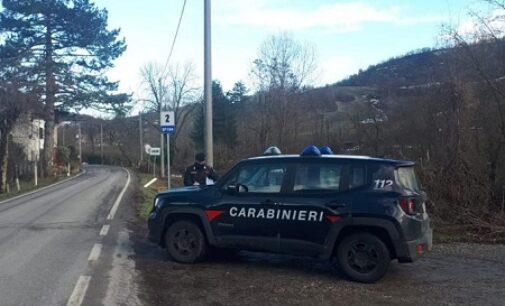 PONTE NIZZA 12/06/2021: Si perde nei boschi. Ritrovata dai carabinieri e dai vigili del fuoco