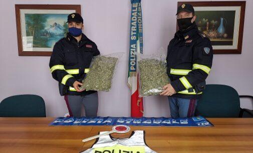 PAVIA 04/01/2021: La sua auto 'odorava' di marijuana. La Polizia Stradale arresta corriere della droga