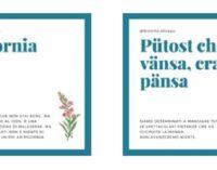VOGHERA OLTREPO 20/02/2021: Tradizioni. Nasce su Instagram la pagina dedicata al dialetto oltrepadano