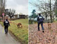 GODIASCO RIVANAZZANO 04/02/2021: Animali. Bocconi avvelenati. Avviati i controlli sul campo con le fototrappole e le unità cinofile