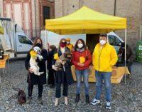 VOGHERA 09/03/2021: 8 Marzo. Coldiretti consegna 300 kg di prodotti a km zero a CHIARA e agli altri centri antiviolenza della provincia