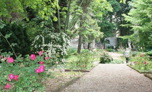 """PAVIA 08/07/2021: """"Una notte all'Orto Botanico"""" di Pavia. Tornano le visite guidate notturne"""