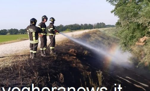 GAMBARANA 12/08/2021: Brucia l'argine. Gran lavoro oggi per i vigili del fuoco di Voghera