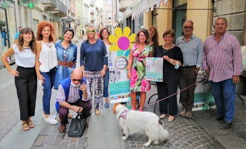 """VOGHERA 15/09/2021: Arte nei negozi e balconi fioriti. In settembre in città la rassegna """"Fiori e Pennelli"""""""