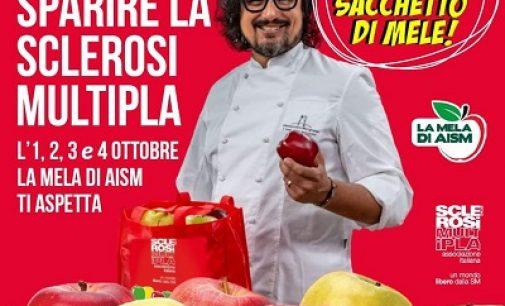 """PAVIA VOGHERA E PROVINCIA 23/09/2021:  """"La mela di Aism"""". L'elenco dei banchetti in cui effettuare l'acquisto benefico contro la Sclerosi Multipla."""