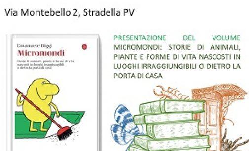 """STRADELLA 15/10/2021: """"Micromondi"""". Stasera al Museo naturalistico la presentazione del nuovo libro di Emanuele Biggi"""