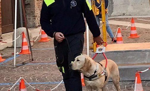 TORTONA 18/10/2021: Lions Club. Domenica la manifestazione con i cani guida per non vedenti